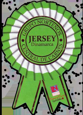 Jersey Dinamarca